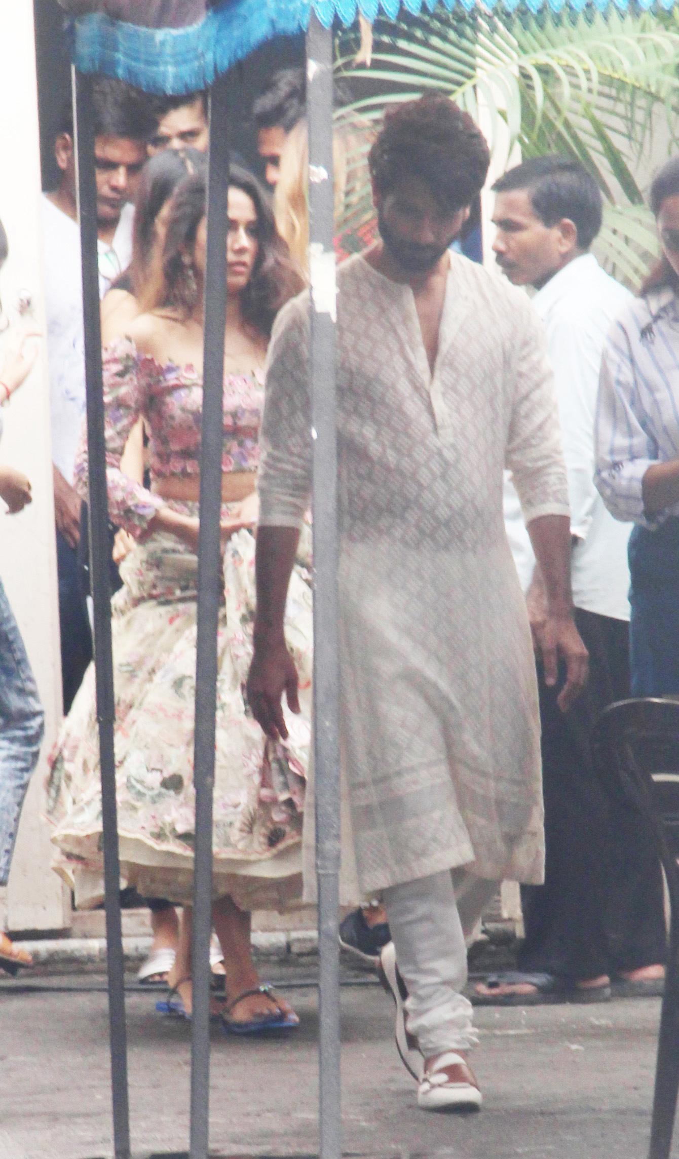 Bollywood Tadka,शाहिद कपूर इमेज,शाहिद कपूर फोटो,शाहिद कपूर पिक्चर, मीरा राजपूत इमेज,मीरा राजपूत फोटो,मीरा राजपूत पिक्चर