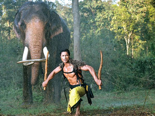 Bollywood Tadka जंगली इमेज, जंगली फोटो, जंगली पिक्चर