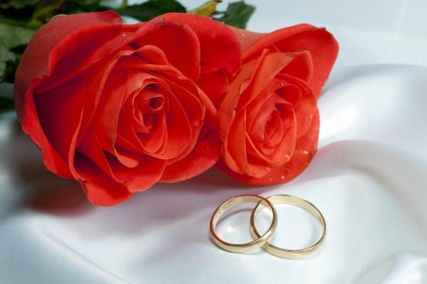 PunjabKesari  हैप्पी रोज डे इमेज डाउनलोड, रोज डे फोटो वॉलपेपर डाउनलोड, rose day hd image, Red rose image