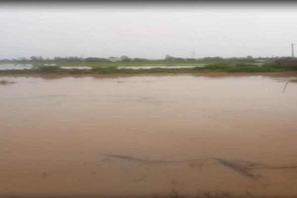 PunjabKesari, Bjp, Congress, Police, Crime, election, Assembly, breaking, latest news, Rain, Water