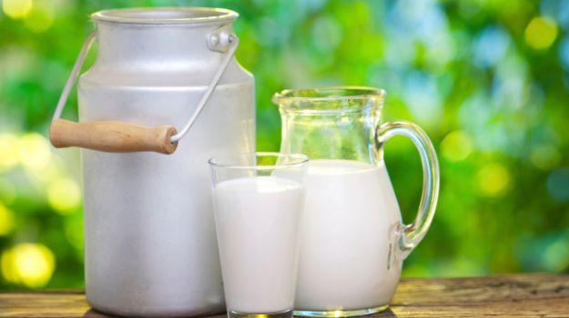 PunjabKesari,Nutrients, Healthy food for kids, Nari