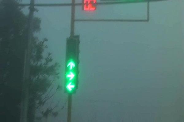PunjabKesari, cold wind, Fog, traffic
