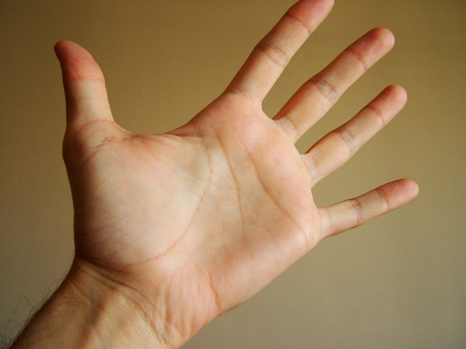 PunjabKesari, Palmistry, Palm, Lines, Hand, Hand image, हस्तरेखा