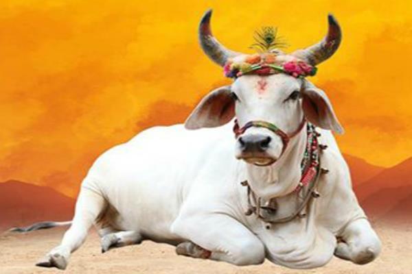 PunjabKesari Upari Badha Se Bachav Ke Vastu Upay