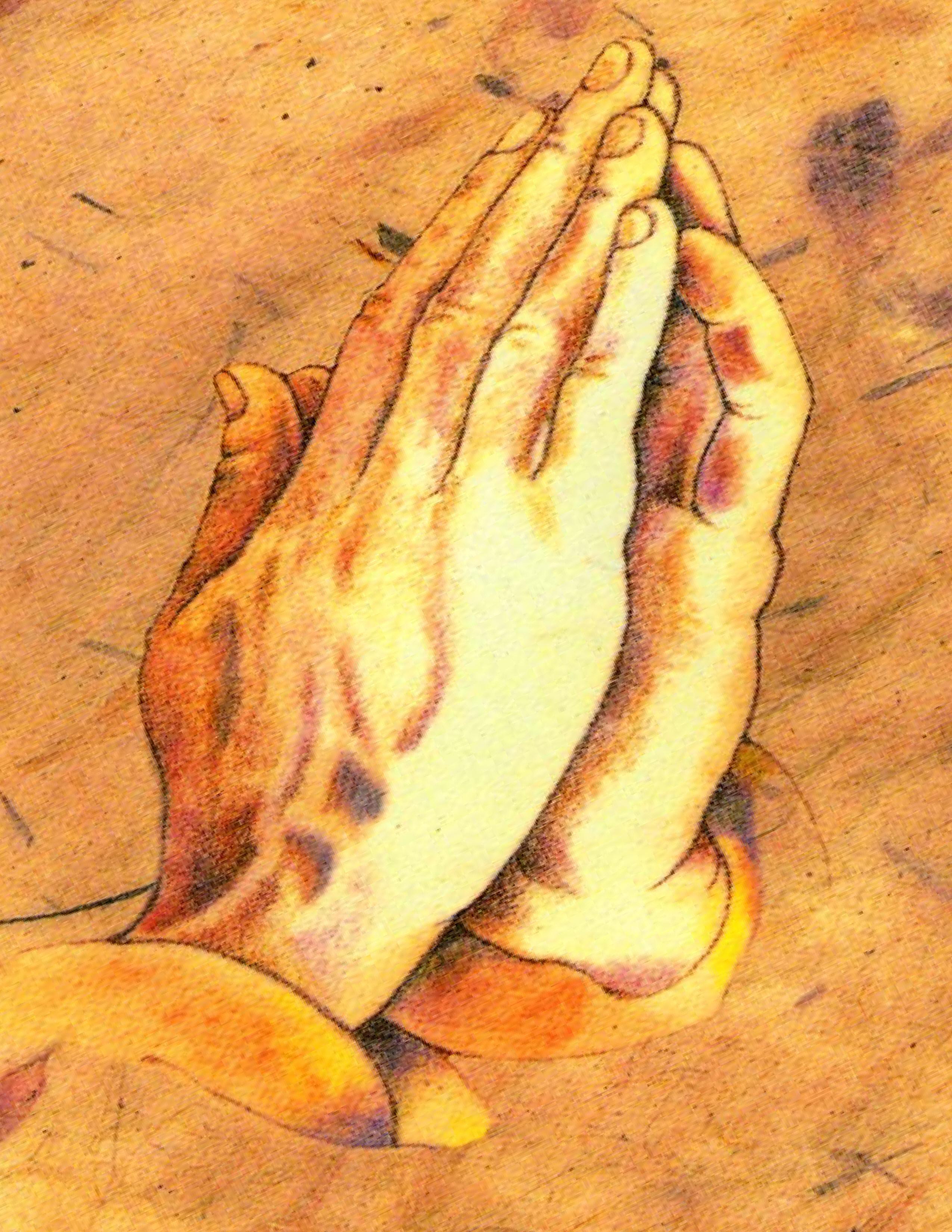 PunjabKesari, Folded hand