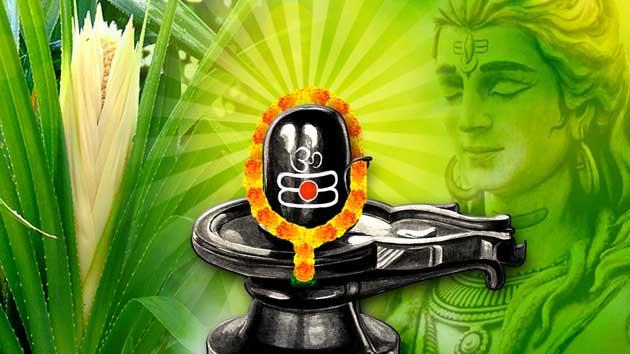 PunjabKesari, Trishul, त्रिशूल, महाशिवरात्रि 2020, Mahashivratri 2020, Mahashivratri, Mahashivratri 2020 puja vidhi, Mahashivratri Importance, Mahashivratri puja date 2020, Shivlinga, dharm, hindu religion, hindu shastra, lord shiva, bholenath