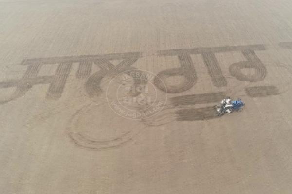 PunjabKesari, farmer done this work at 550th gurpurab