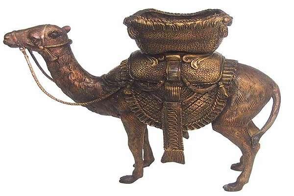 PunjabKesari, kundli tv, फेंगशुई ऊंट, Feng Shui Camel image