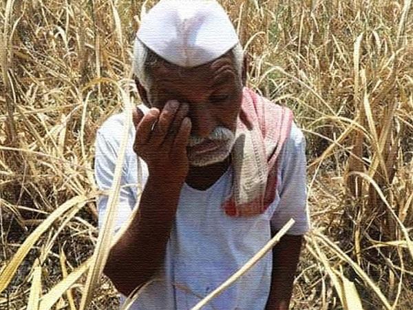PunjabKesari, Agriculture Minister kaml patel, BJP, Congress, Kamal nath, Farmer loan waiver, farmer, agricultural bill, agricultural ordinance