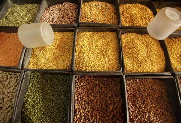 PunjabKesari, दाल, Pulses