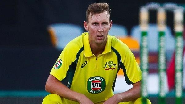 sports news, cricket news hindi, australia player, bili