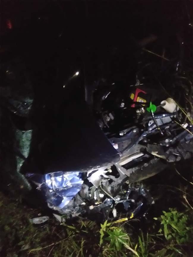 PunjabKesari, mother-son died in car accident