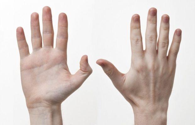 PunjabKesari, Hands