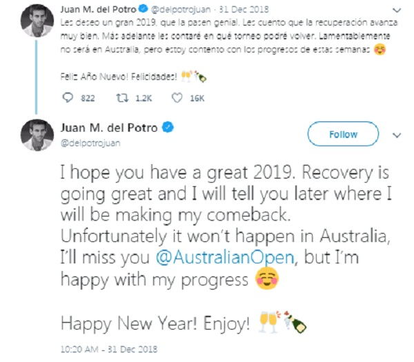 sports news, Tennis news in hindi, Australia Open 2019, Fifth world ranking, Del Potro, will not play, due to injury