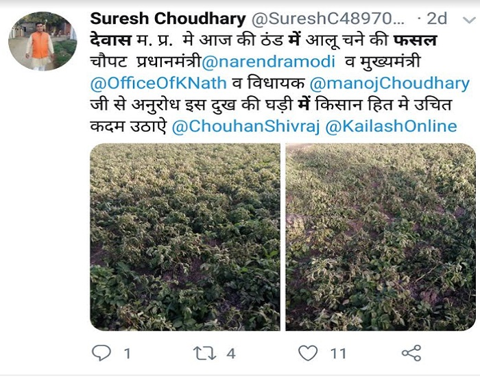 PunjabKesari, Madhya Pardesh Hindi News, Bhopal Hindi News, Bhopal Hindi Samachar, CM kamalnath, Action, Sown in cold crops, Letter