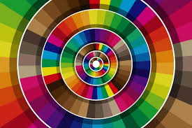 PunjabKesari Color collection