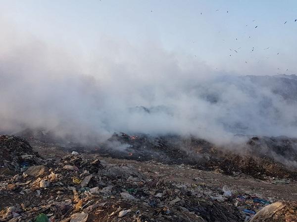 PunjabKesari, NGT was surprised to see garbage on Variyana dump
