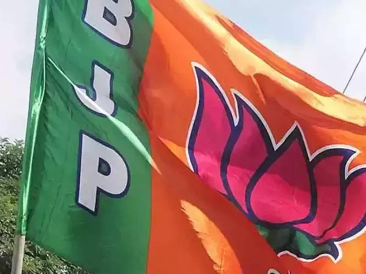 PunjabKesari, madhya pradesh, bhopal, bjp, Shivraj singh chauhan, B JP VIce president, Brahmin