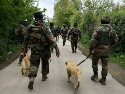 search operation in baramula