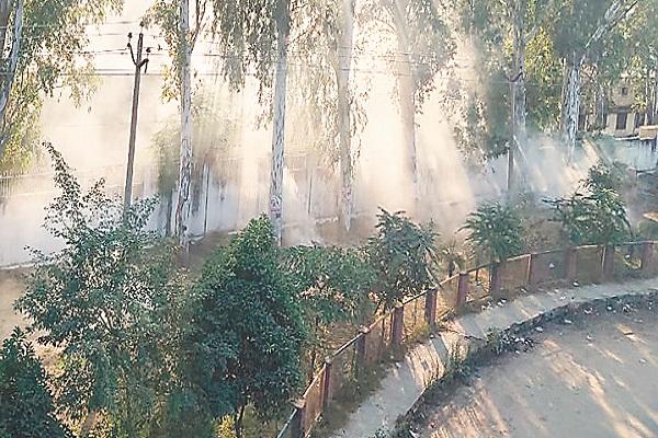 PunjabKesari, Despite NGT meetings order of burning garbage not stop