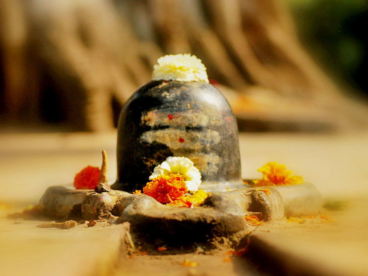 PunjabKesari, Sawan 2020, Sawan, सावन, सावन 2020, Lord Shiva, भोलेनाथ, शिव जी, Somvaar Vrat, Monday Vrat, Monday Upay, Jyotish Gyan, Astrology In hindi