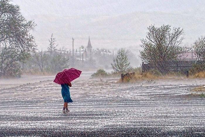 PunjabKesari This festival symbolizes the arrival of the rain