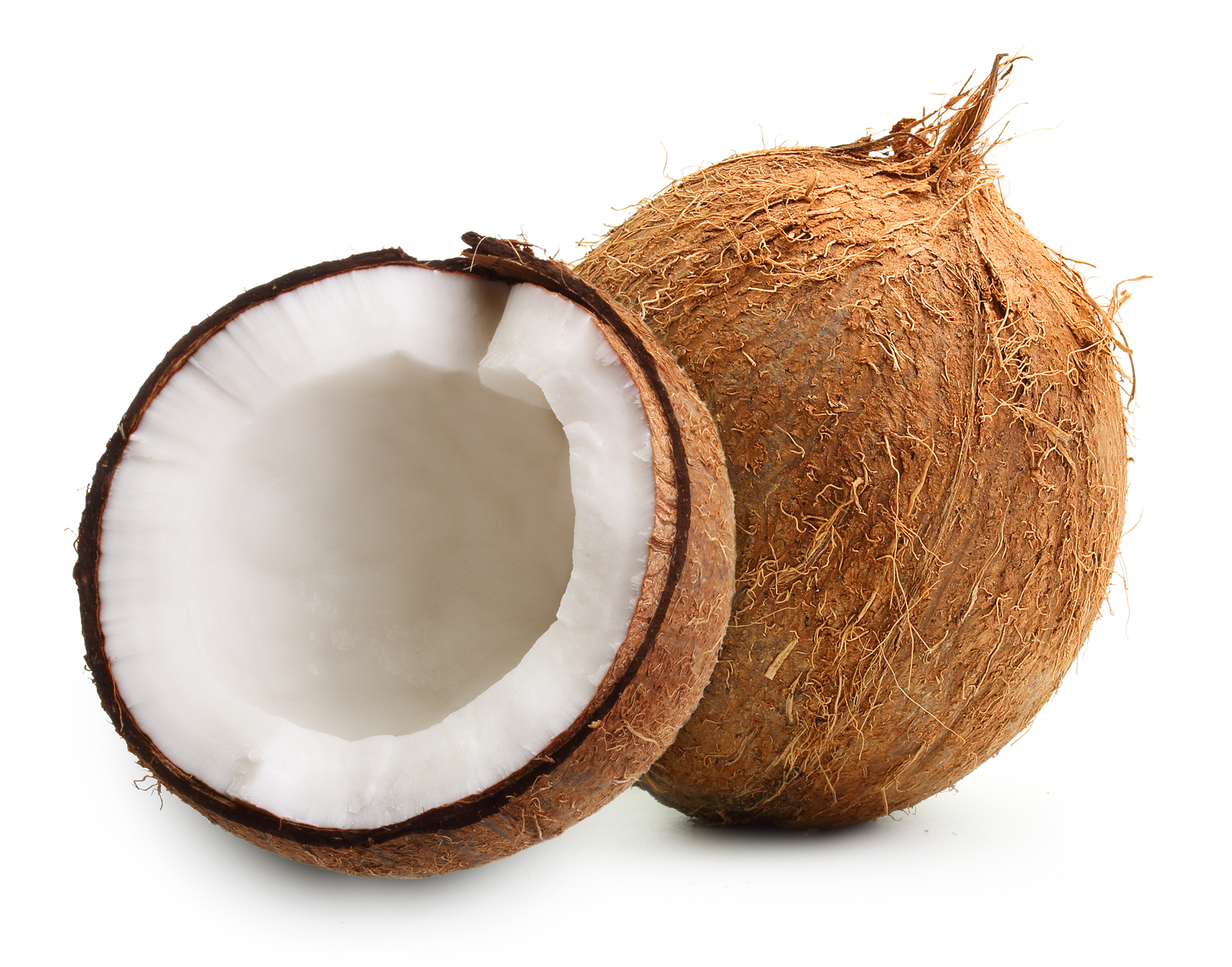 PunjabKesari, नारियल, श्रीफल, Coconut, Importance of Coconut in worship