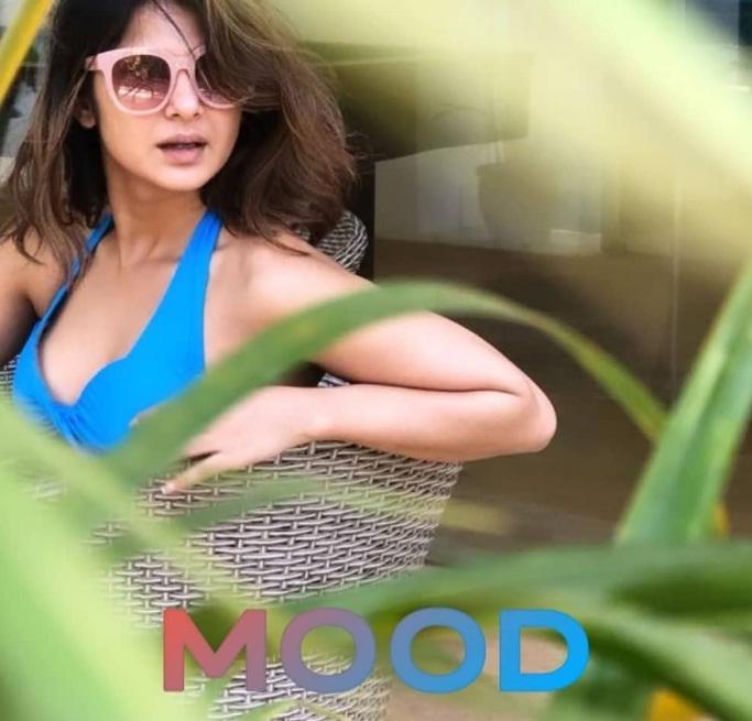 Bollywood Tadka,जेनिफर विंगेट इमेज,जेनिफर विंगेट फोटो, जेनिफर विंगेट पिक्चर,