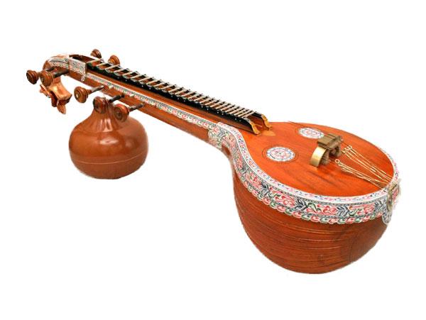 PunjabKesari, वीणा
