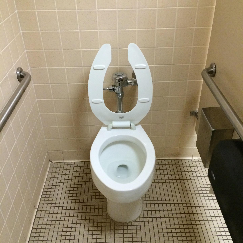 PunjabKesari, Toilet2 image