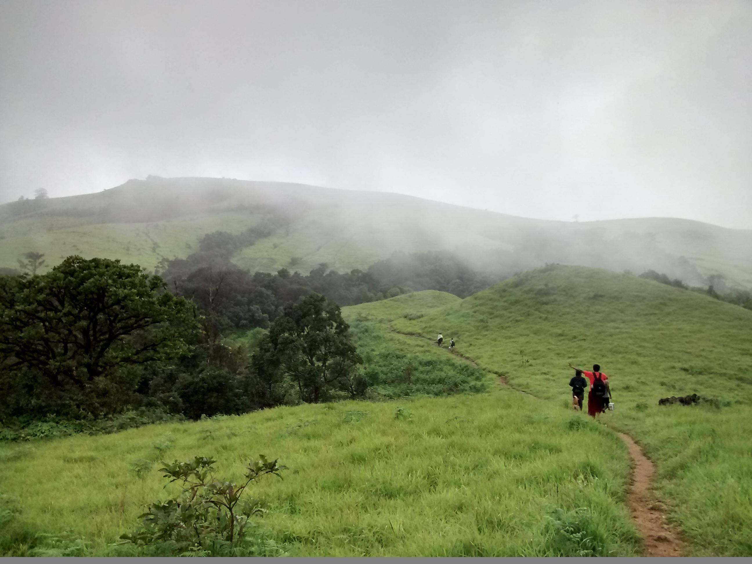 PunjabKesari, nari, Kodachadri, Karnataka image