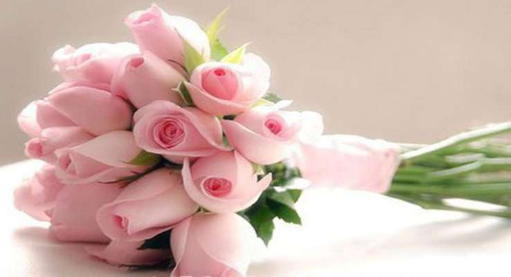 PunjabKesari, kundli tv, pink roses image