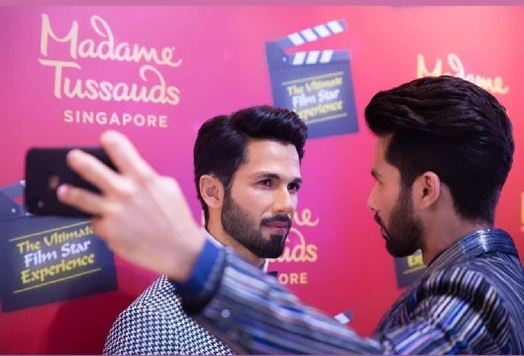 Bollywood Tadka, शाहिद कपूर इमेज, शाहिद कपूर फोटो, शाहिद कपूर पिक्चर