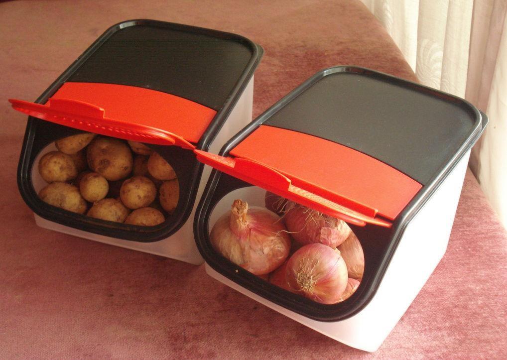 PunjabKesari, Potato