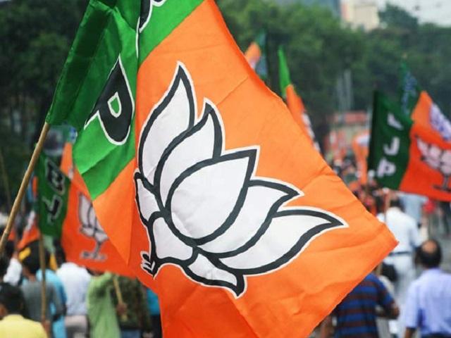 PunjabKesari, Mp News, Rewa News, Punjab Kesari, BJP, Abhar Rally, Rajendra Shukla, Thanx To Voters, रीवा न्यूज,बीजेपी,राजेन्द्र शुक्ला,मतदाताओं का धन्यवाद