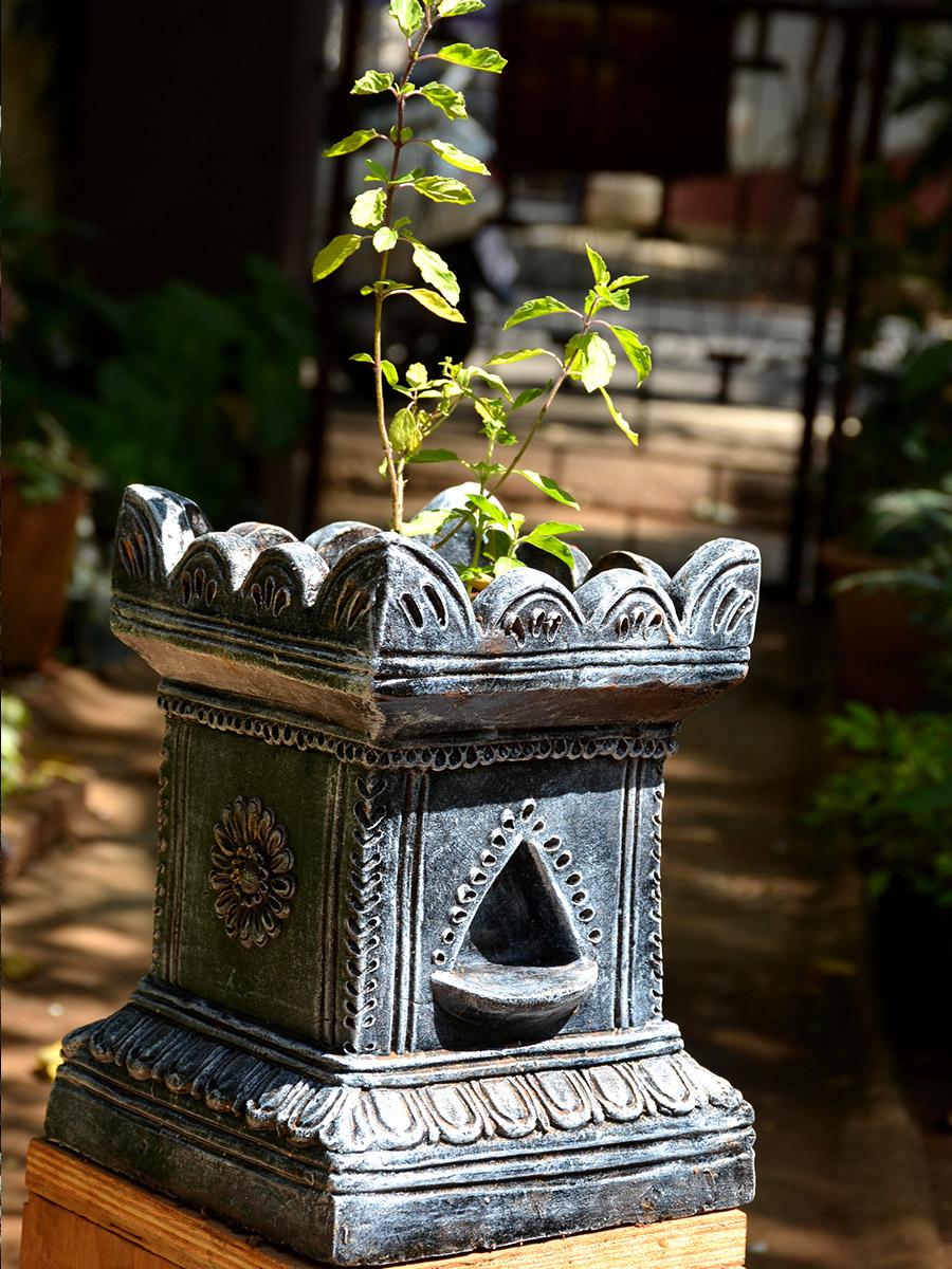 PunjabKesari,nari,tulsi plant