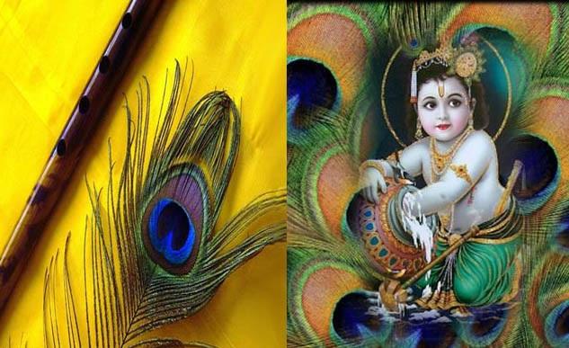 PunjabKesari, बाल गोपाल इमेज, मोरपंख इमेज