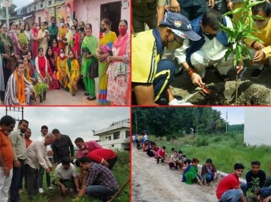 PunjabKesari, harela, harela festival, uttarakhand harela fest, cm-and-minister-tree-plantation, Dharm, Hindu Vrat Or Tyohar, हिंदू वर्त और त्यौहार