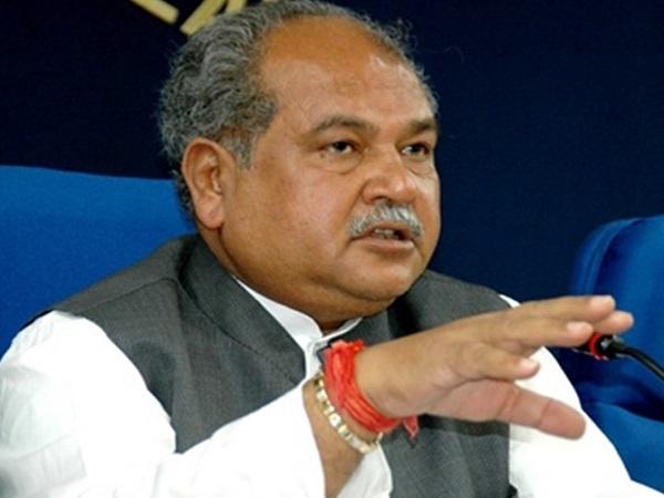 PunjabKesari, Madhya Pradesh, Bhopal, BJP, Congress, Jyotiraditya Scindia, narendra Singh Tomar