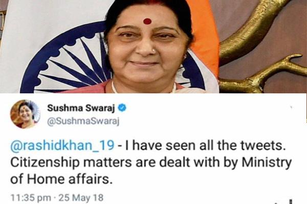 Sushma Swaraj's witty tweet on Afghan star cricketer Rashid khan gone viral