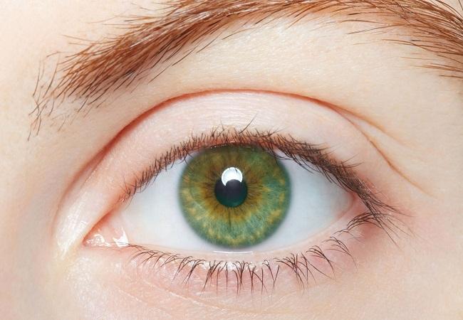 PunjabKesari, Green Eyes, हरी आंखें, Green eyes image