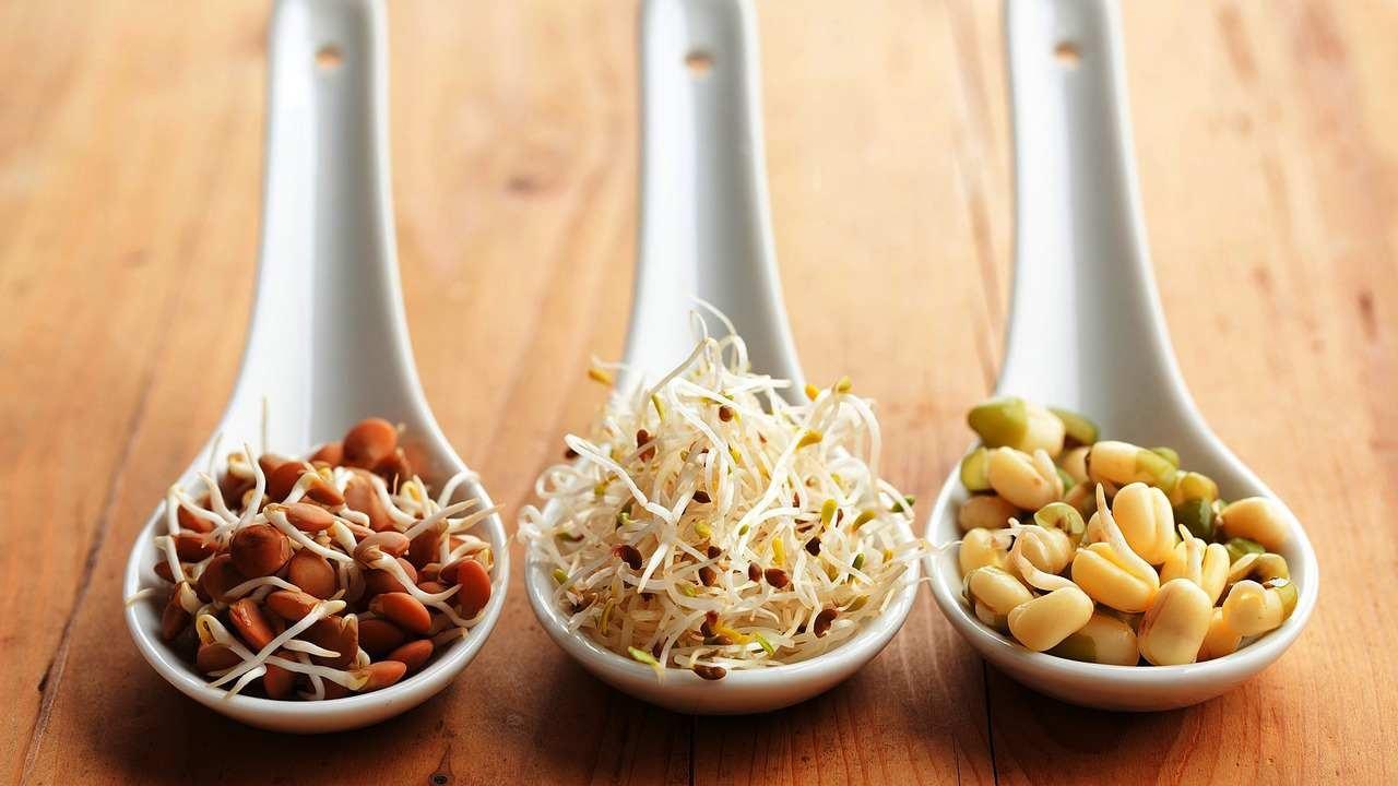 PunjabKesari, sprouts
