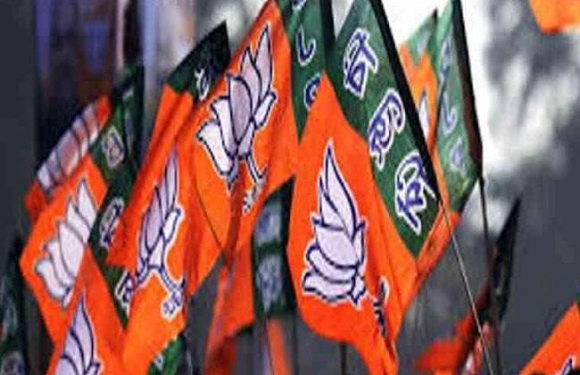 PunjabKesari,  Madhya Pardesh Hindi News , Ujjain Hindi News,  Ujjain Hindi Samachar, BJP, Shyama Bansal, Loksabha Election