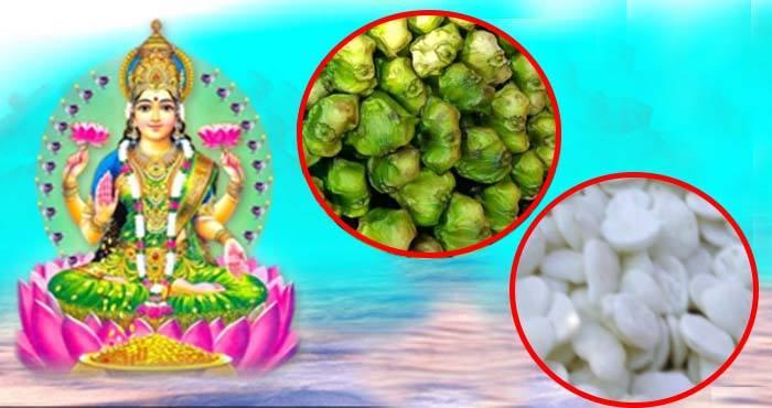 PunjabKesari, kundli tv, devi laksahmi