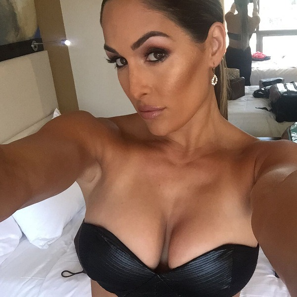 Nikki bella hot sexy bikini clevage