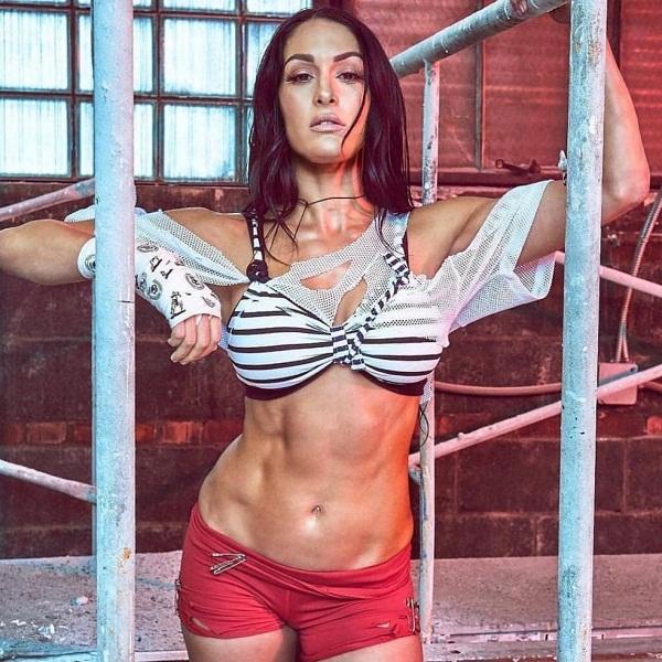 Nikki bella hot sexy bikini