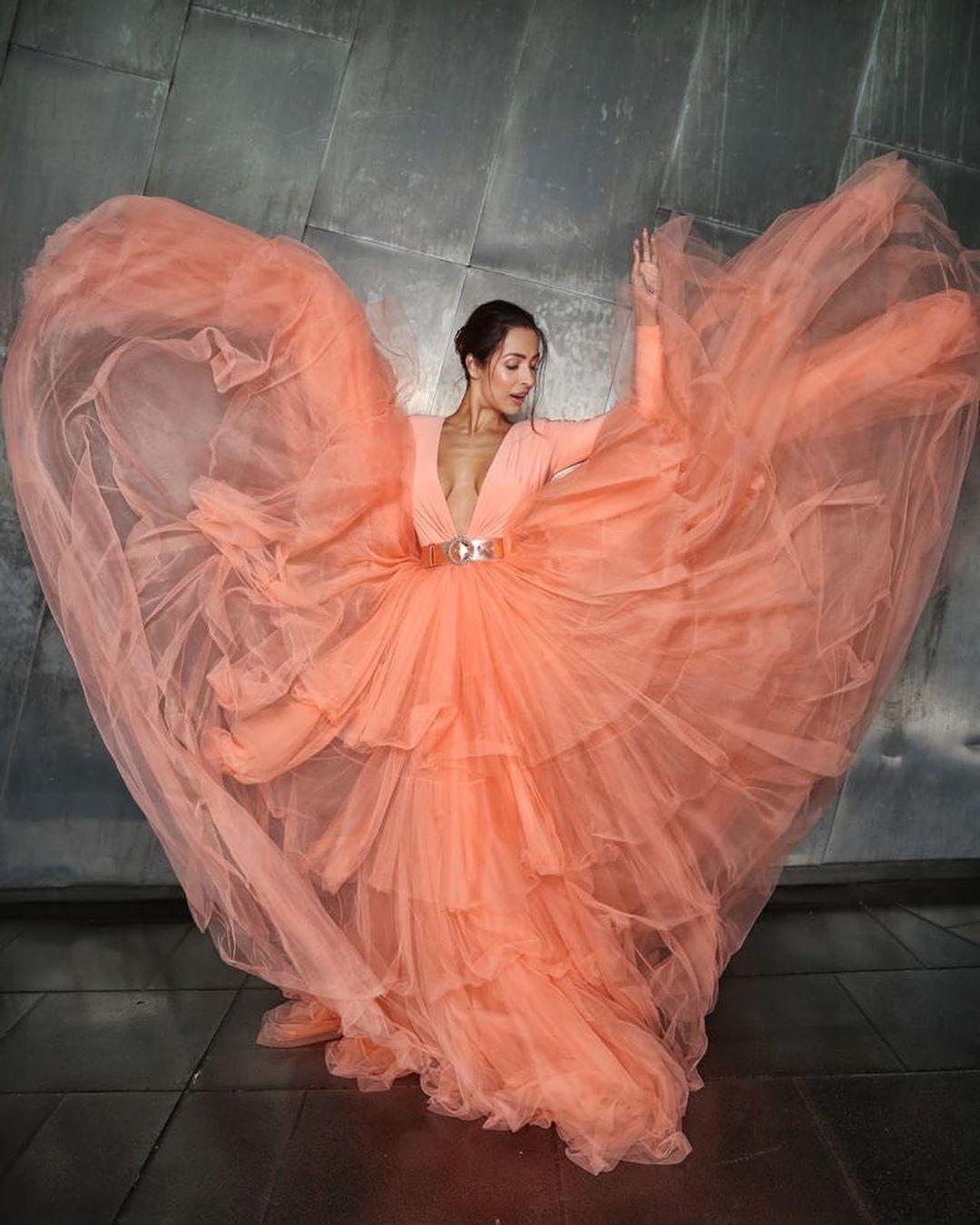 Bollywood Tadka,मलाइका अरोड़ा इमेज,मलाइका अरोड़ा फोटो,मलाइका अरोड़ा पिक्चर