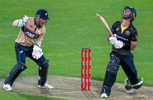 NZ vs AUS 3rd T20, NZ vs AUS Scoreboard, NZ vs AUS, New Zealand vs Australia 3rd T20I, Cricket news in hindi, Glenn Maxwell