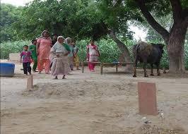 PunjabKesari,Graveyard in Their Homes, Agra, कब्रिस्तान, Nari