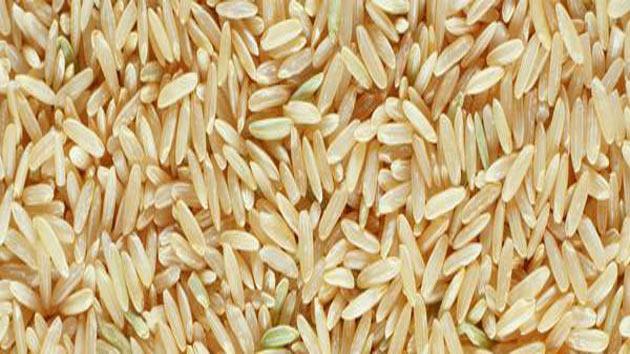 PunjabKesari grains of rice can change your life